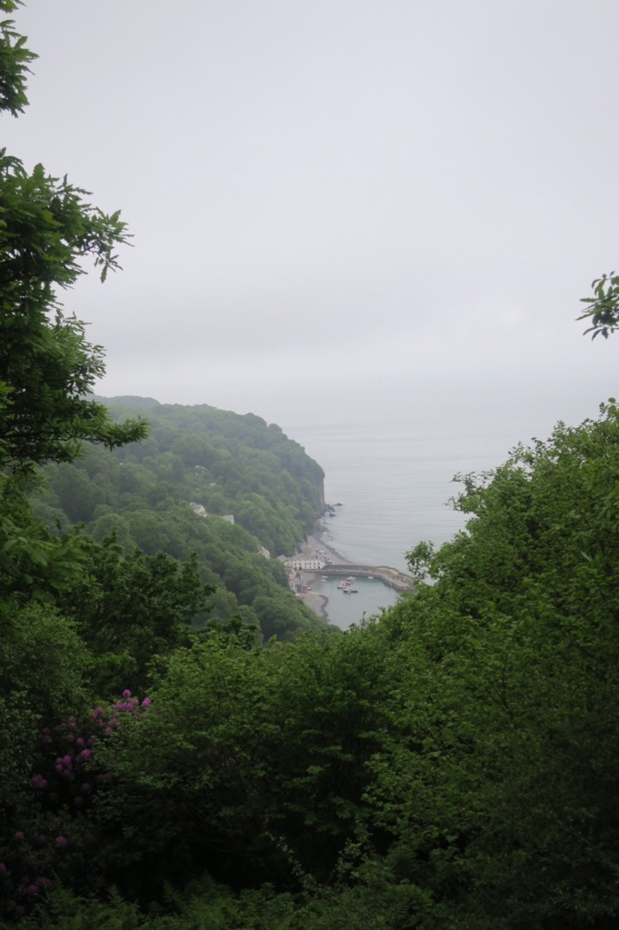 View of Clovelly Harbour