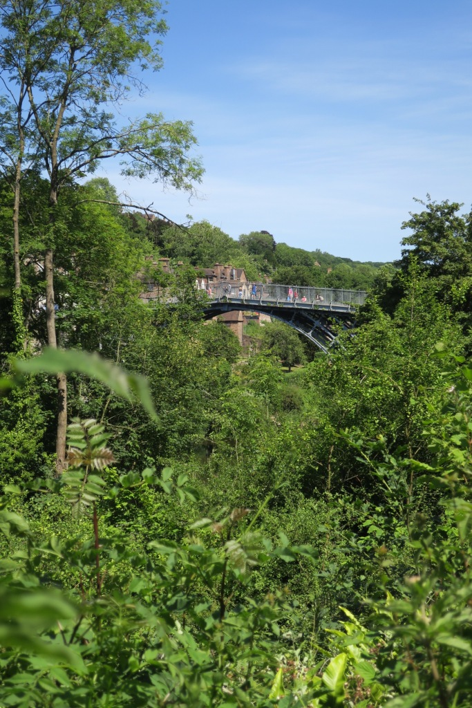 A glimpse of the iron bridge through trees