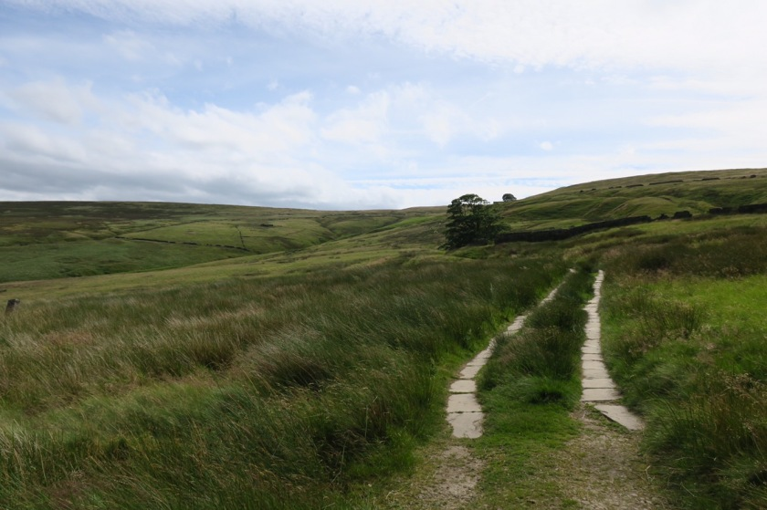 Not a vehicle track...it's Pennine Way dual carriageway! Top Withins is on the horizon.